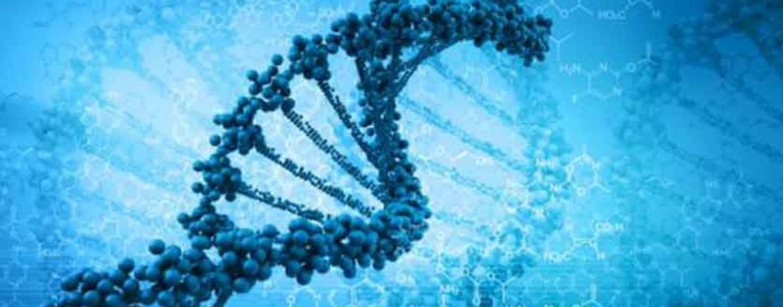 The New Gene Mutation Technology