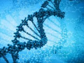The New Gene Mutation Technology