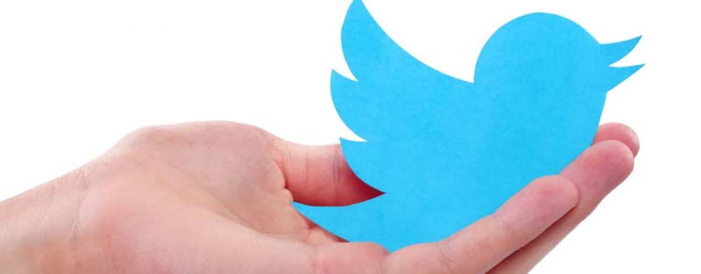Twitter Terminates Access to Surveillance Materials for Client Privacy